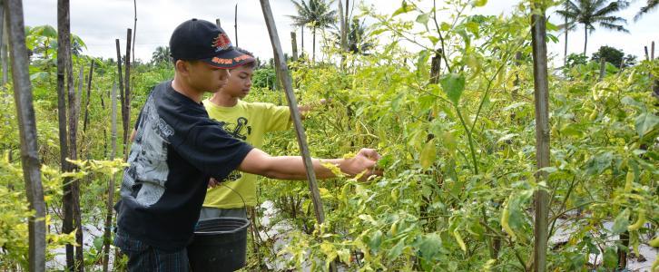 Live In Kelas X di Desa Sumber, Merapi