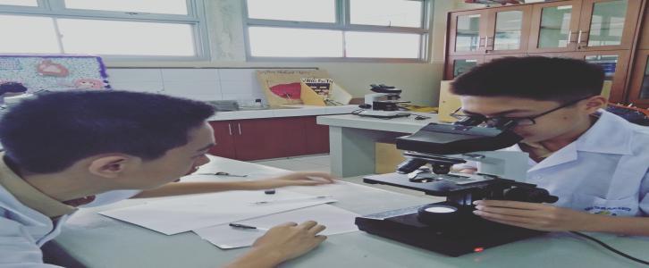Kegiatan Praktikum di Ruang Laboratorium